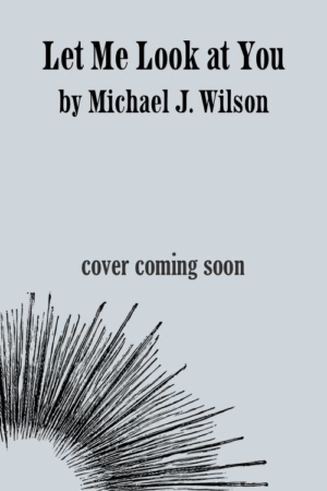 Let Me Look at You by Michael J. Wilson